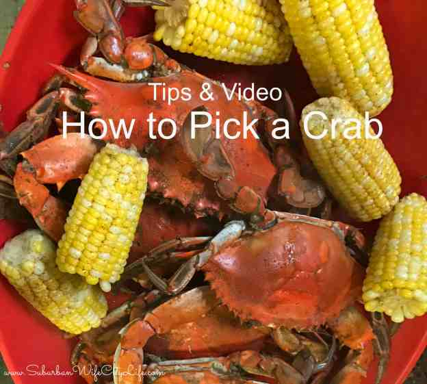 Tips & Video for How to Pick a Crab