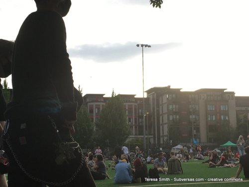 people lounging on grass, capital hill autonomous zone