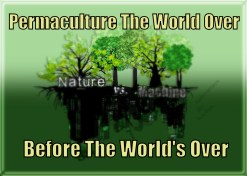 permaculture-the-world-over