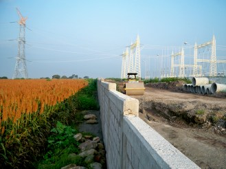 Frente a frente. Los cultivos de las tierras que no fueron vendidas aún florean ante las torres de metal como diciendo aquí estamos y no nos vamos. Foto: Equipo Huexca. Huexca, Morelos otoño 2013