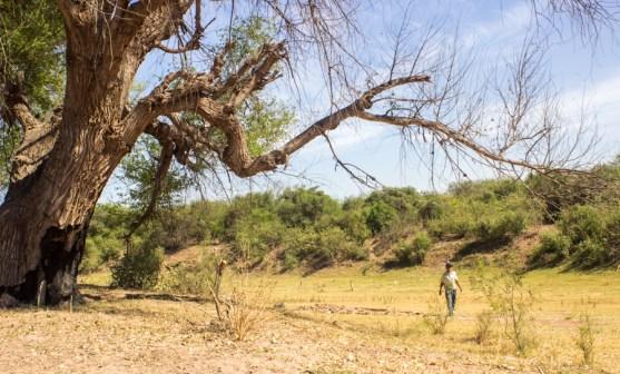 Nostalgia de caminar donde alguna vez corrió un río. Fotografía: Aldo Santiago