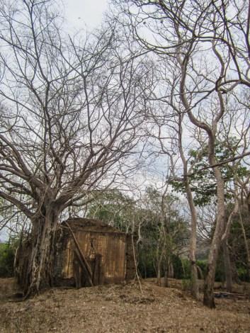 Hihuitlán: lo que queda de la hacienda
