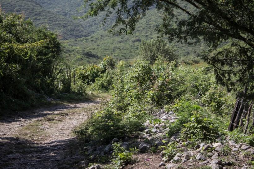 Vista del lugar donde están ubicadas las fosas. Fotografías: Heriberto Paredes