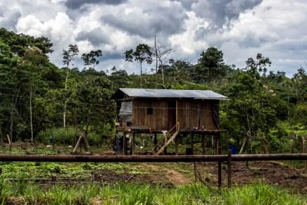 La vida al límite: Petróleo en la amazonia ecuatoriana