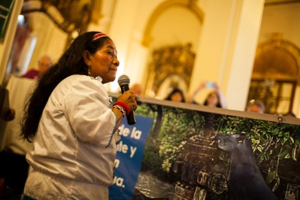 COP20, La otra realidad: Tribunal «José Tendetza» por los derechos de la naturaleza