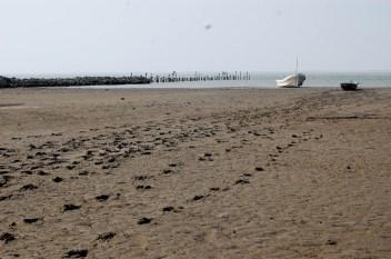 Playa istmeña. Fotografía: La Pirata