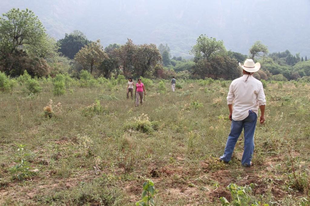 El terreno de santos, antes de la temporada de lluvias