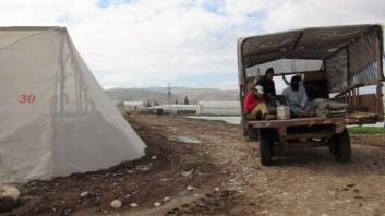 Estos palestinos son campesinos a quienes se les ha confiscado su tierra. Ahora trabajan para las empresas agrícolas israelíes. Fotografía: Susana Norman