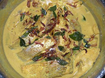 Meen Palu Curry