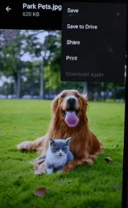 Cara Print Foto dari HP