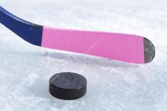Шайба в хоккее. Какие её размеры, вес, цвет?