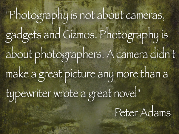 photo/art quote from Peter Adams