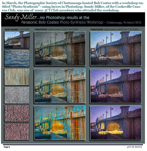 sandy miller art photos