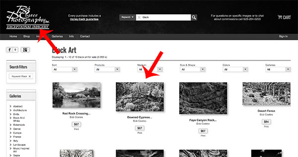 fine art america web site - Successful Photographer