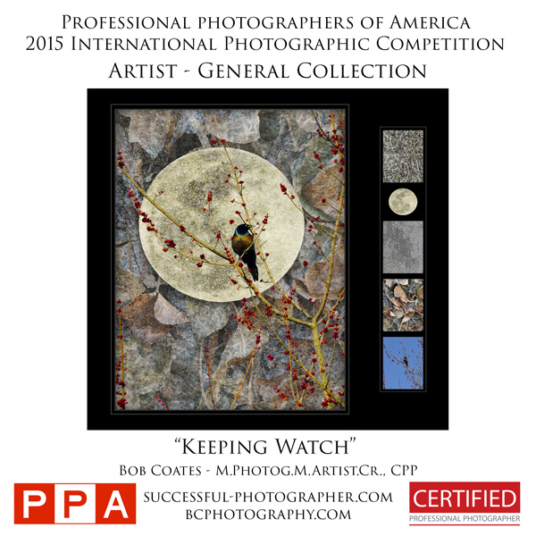 PPA image results