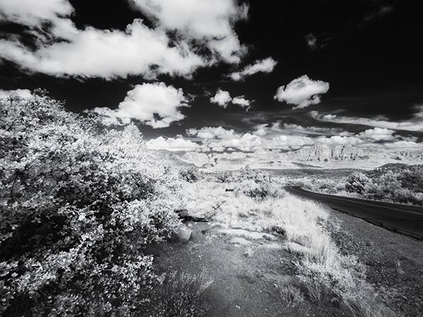 coates_1390012_dry_creek_road_600_pix