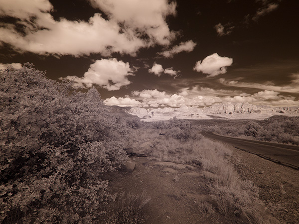 infrared image straight out of camera