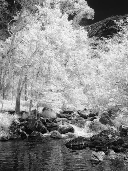 sedona oak creek infrared photo