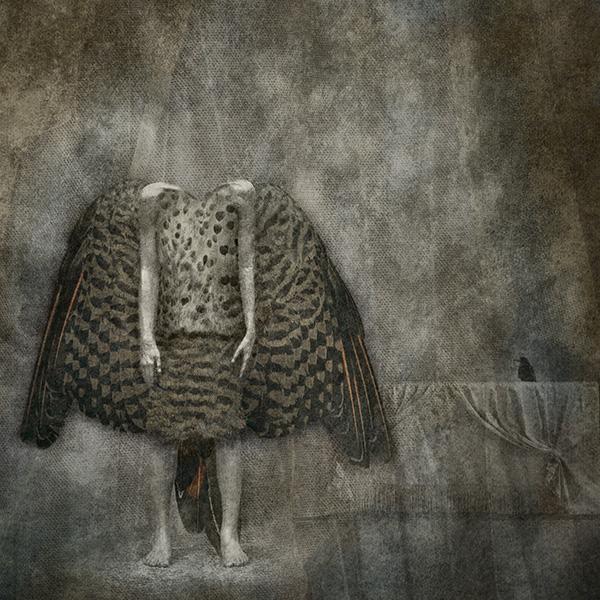 Image 'Two Birds' - © Julieanne Kost