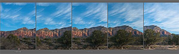 example of 5 images in Adobe bridge