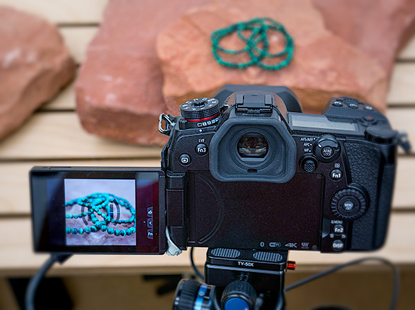 lumix g9 tether - Successful Photographer