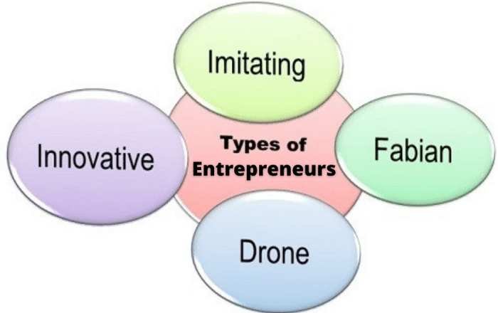 Efficacy of entrepreneur, Successful entrepreneur