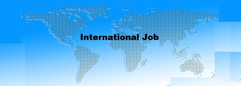 how to get an international job