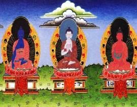 five buddha families