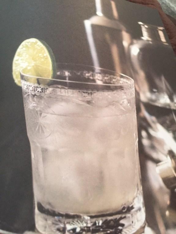 Vodka Gimlet--Photo: Brenda C Hill