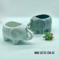 Elephants pots
