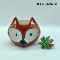 fox head pot