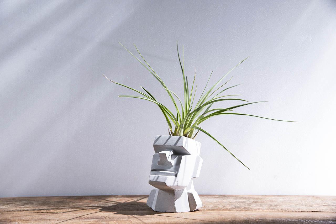 教師節禮物 水泥盆栽與空氣鳳梨的搭配 摩艾像
