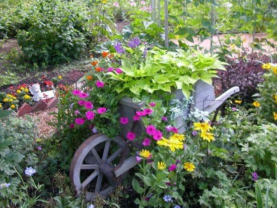 Carretillas con flores para adornar el jardín 2
