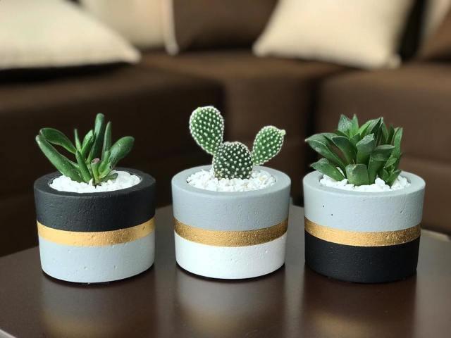 Modern succulent planters