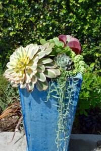 Imagine this planter in your garden.