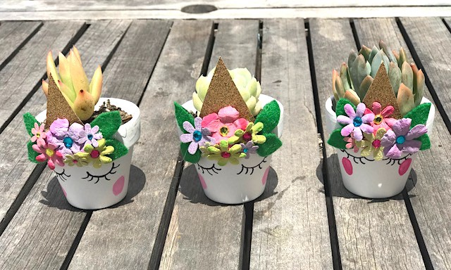 Unicorn Succulent Planter DIY
