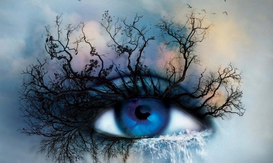 bannerShatter me new