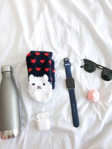 Swell water bottle, llama socks, airpods, apple watch, sunglasses, and an EOS Lip balm.