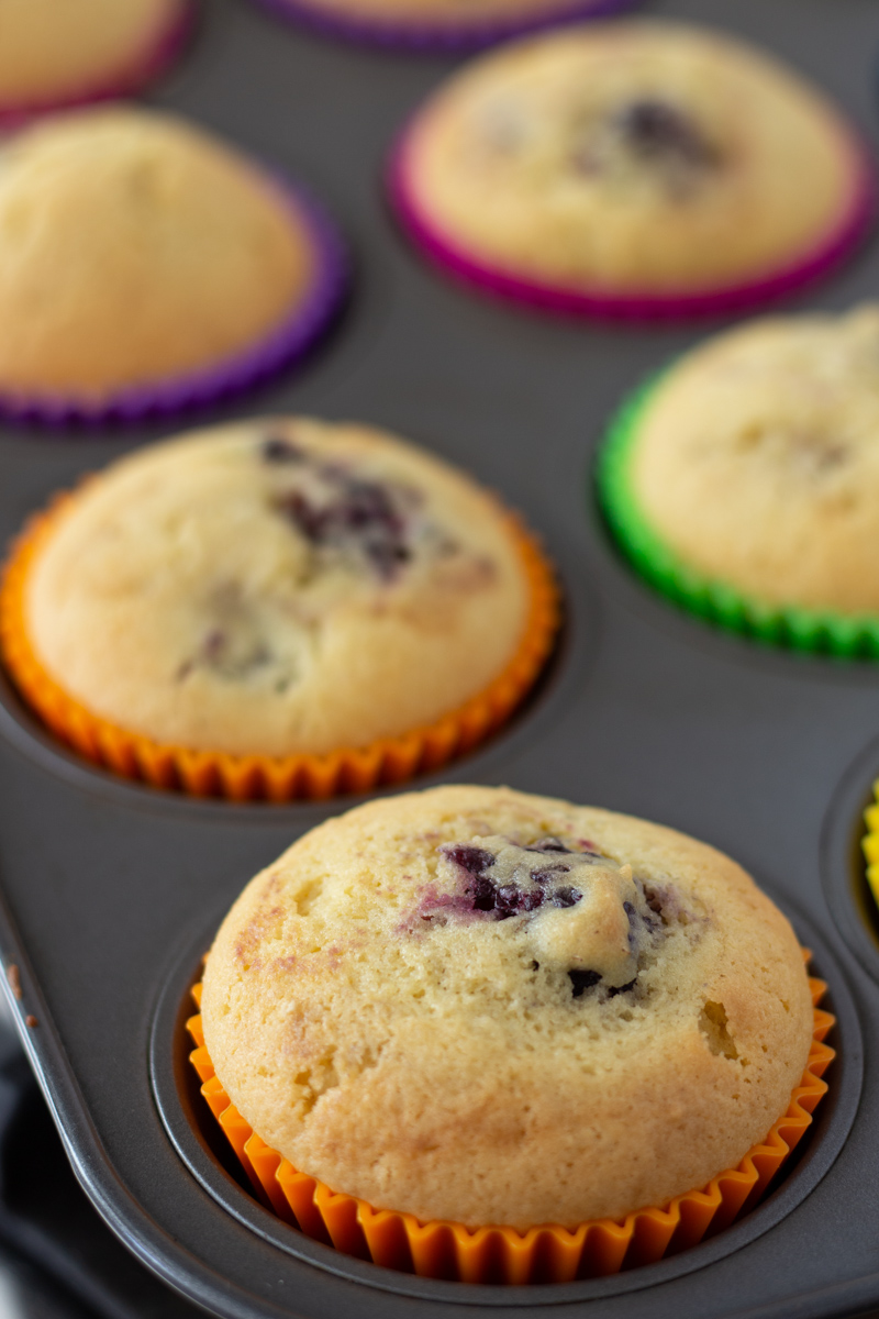 Freshly baked blackberry muffins in silicone baking cups.
