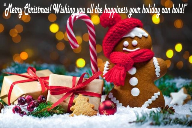 """""""Merry Christmas! Wishing you all the happiness your holiday can hold!""""  Happy Merry Christmas 2020"""