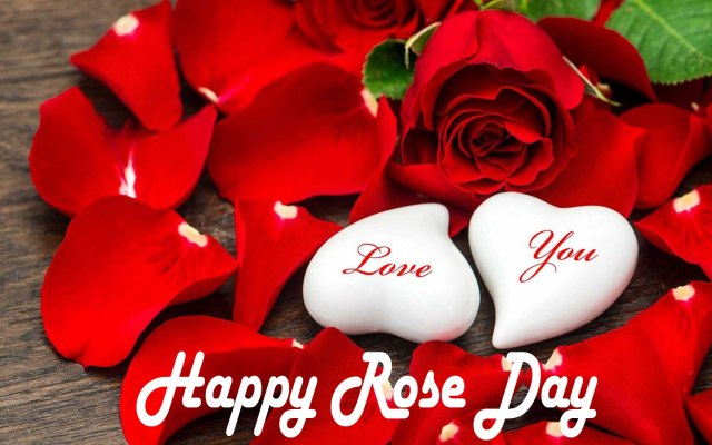 Happy Rose Day 2021 My Love HD Images, Wishes 7th Feb
