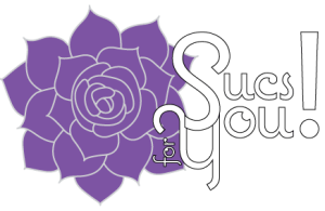 Sucs for You