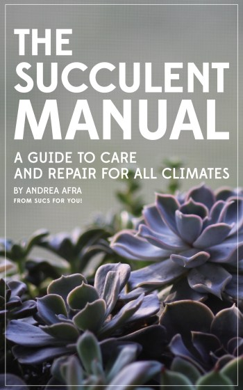 The Succulent Manual by Andrea Afra - now available on Amazon!!