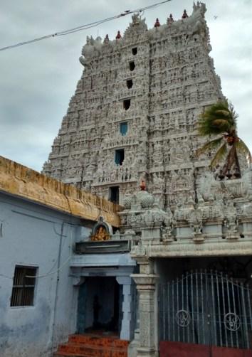 Suchindram temple 'gopuram'
