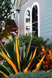 South Coast Plaza & Pics with Amber 094