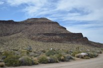 Mojave National Preserve 006