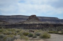Mojave National Preserve 007