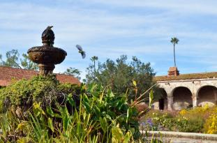 Landing at the Mission Fountain