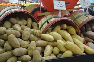 Farm Store 065