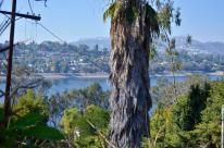 Silver Lake to Angelino Heights, part 1 (14)